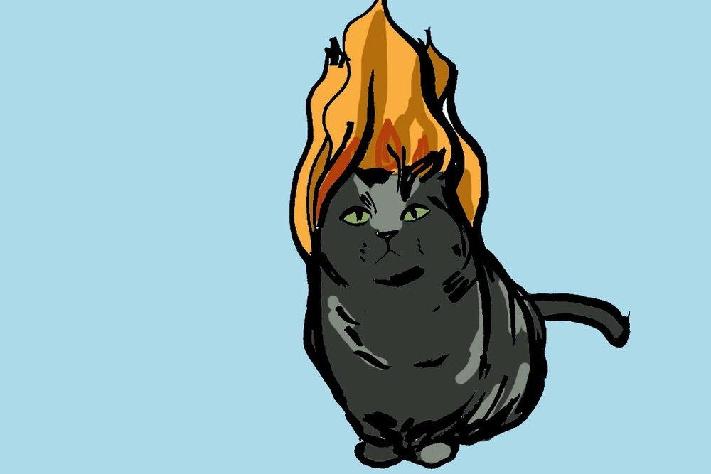 catonfire.jpg
