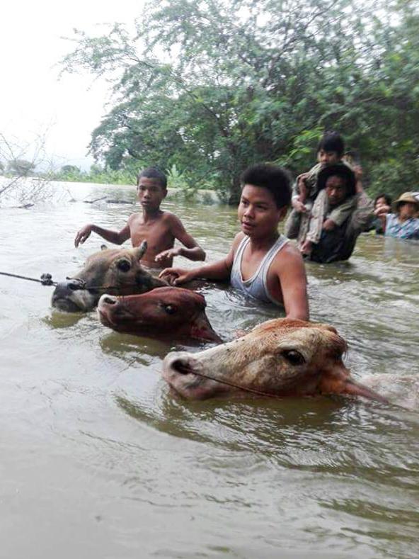 Saving people and livestock.
