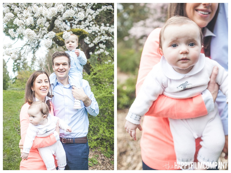 with baby spring blossom tree portraits family  - the Happy Film Company - Seattle Family Photographers - Cherry Blossoms Mini Shoots