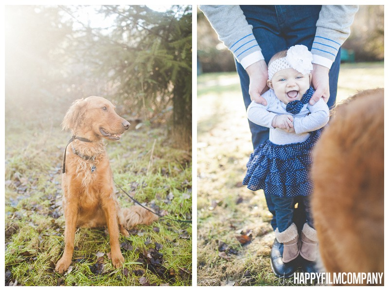 Cute baby looking at the adorable dog- the Happy Film Company - Why It's a Good Idea to Include Dog in Your Family Portraits
