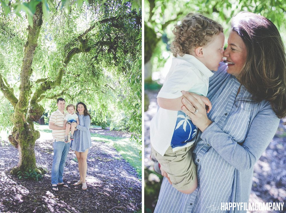Maternity photoshoot- family under the tree - the Happy Film Company - Seattle Family Photos
