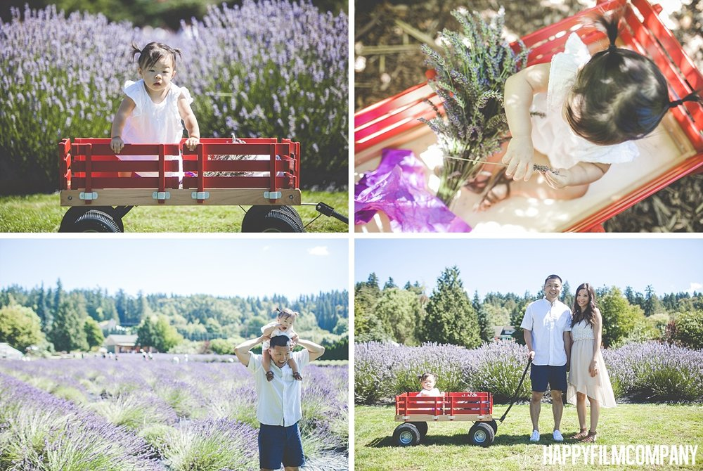 Family pf 3 in the Lavender Fields - the Happy Film Company - Seattle Mini Family Photo Shoots