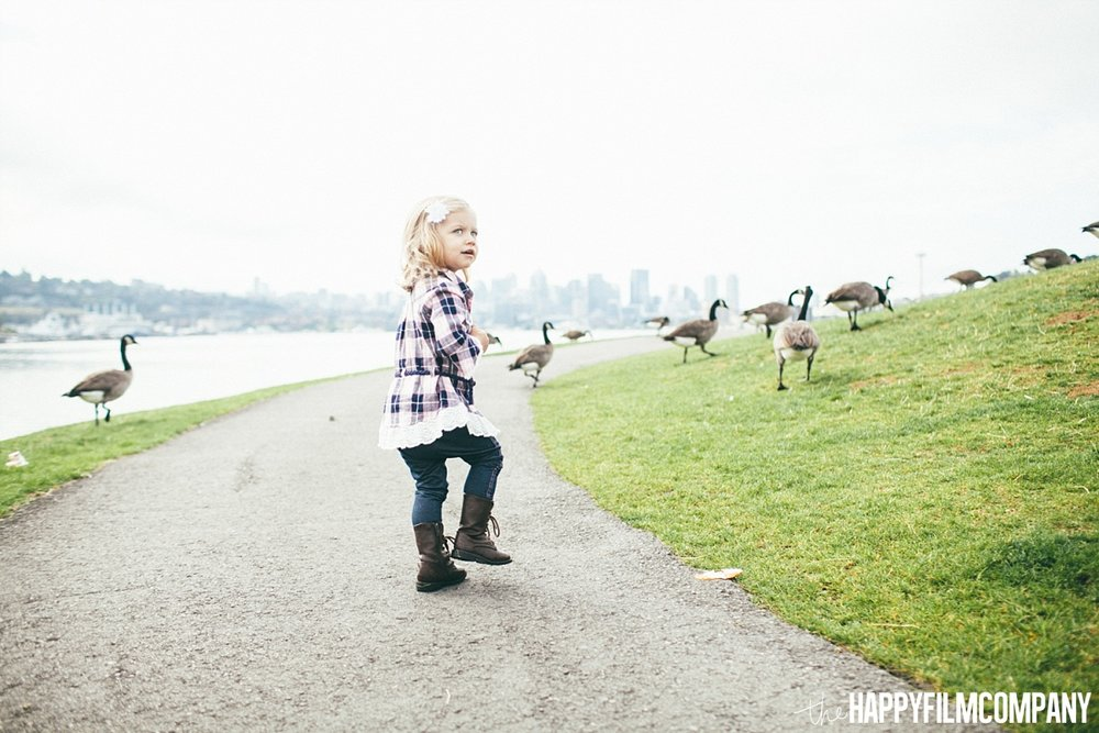 Little girl chasing some geese - the Happy Film Company - Seattle Family Photos
