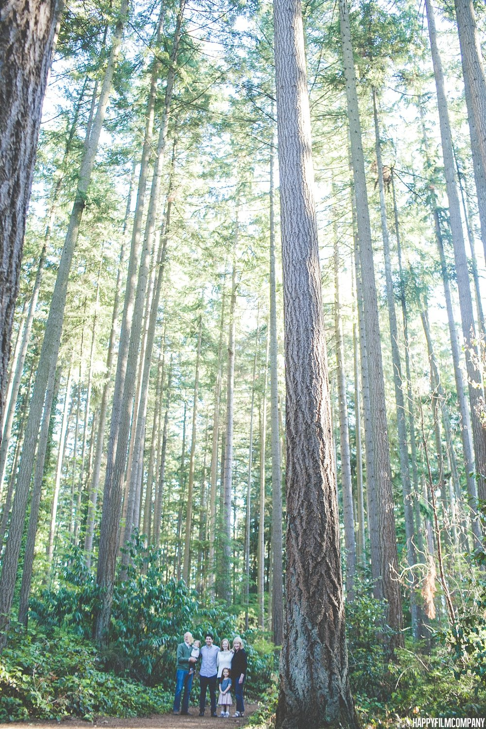Forest walk - the Happy Film Company  - Seattle Family Photos