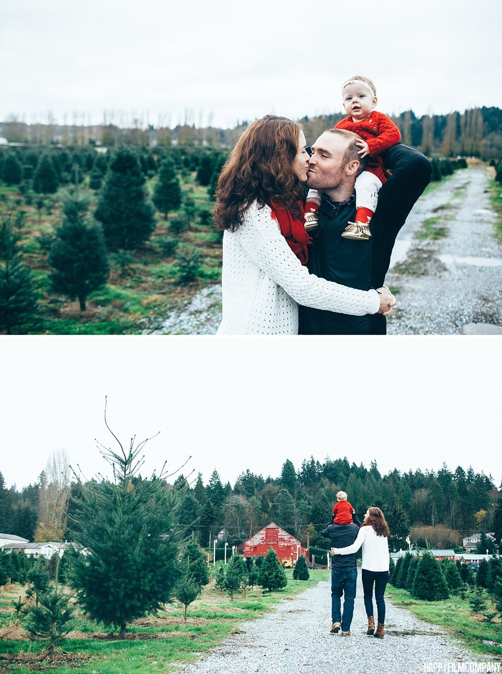 Dad carrying his daughter on his shoulder - Seattle Family Photos at the Christmas Tree Farm