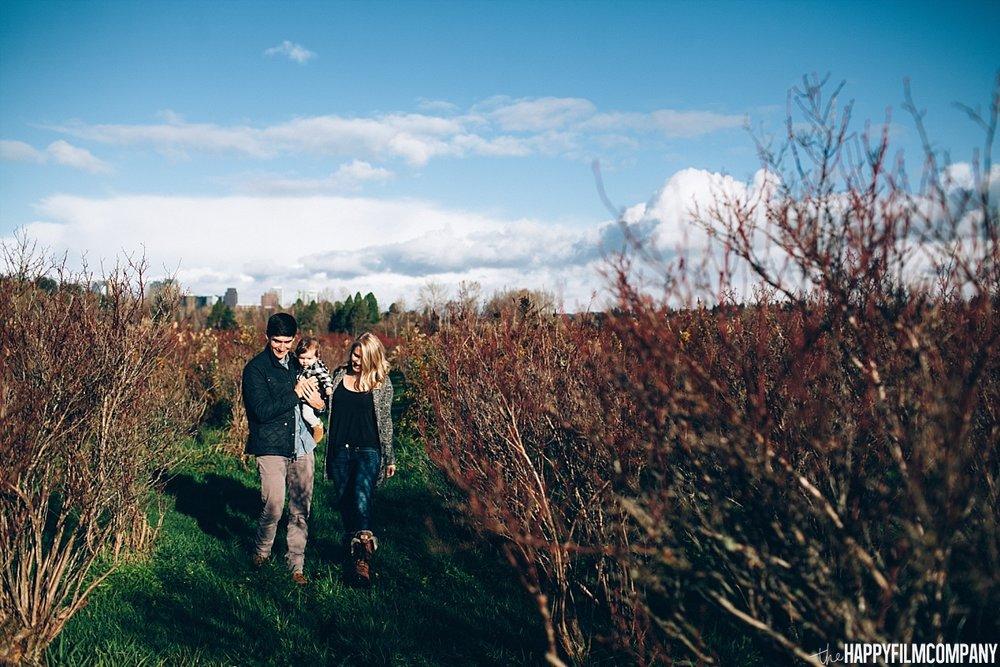 Morning walk at the Blueberry farm - the Happy Film Company - Seattle Family Photos