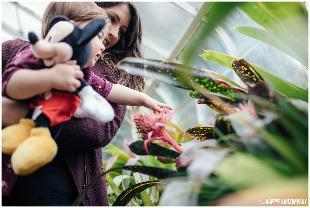 the Happy Film Company - Seattle Family Photos - Volunteer Park Conservatory - kids touching plants in greenhouse