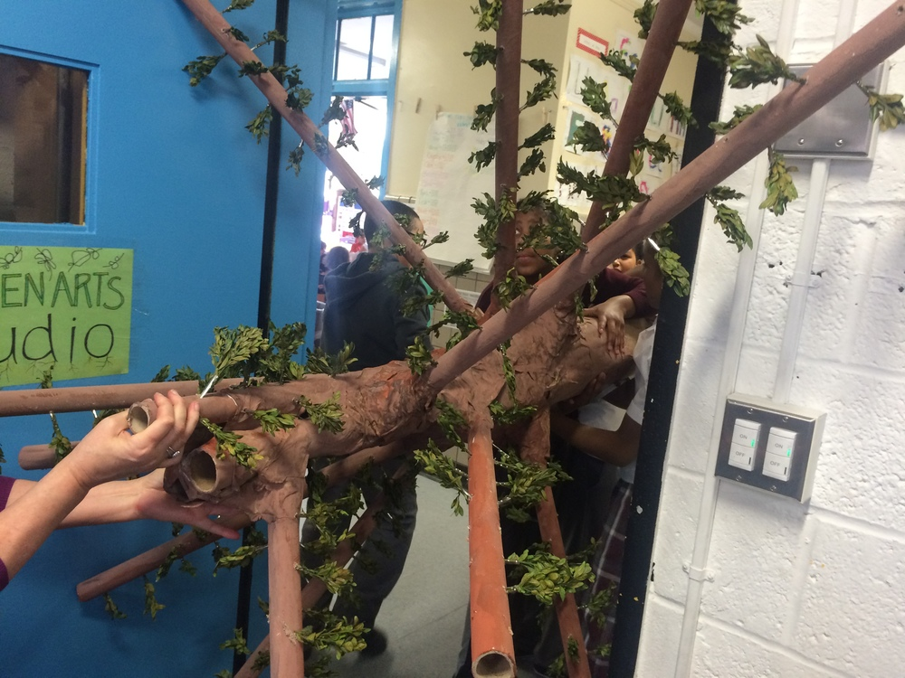 How do you get a 5 foot span tree through a 3 1/2 foot door without destroying it? Leave it to a team of 5th graders. For more photos of the tree's journey to room 220, visit our Inquiring Minds USA Facebook page