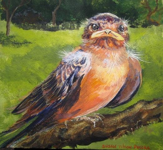 the fledgling.jpeg