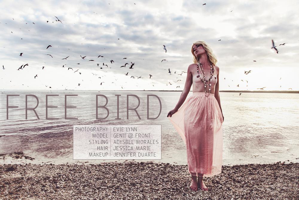 Evie Lynn_Free Bird_01 words.jpg