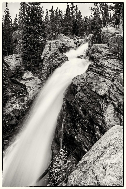 Alberta Falls, Black & White