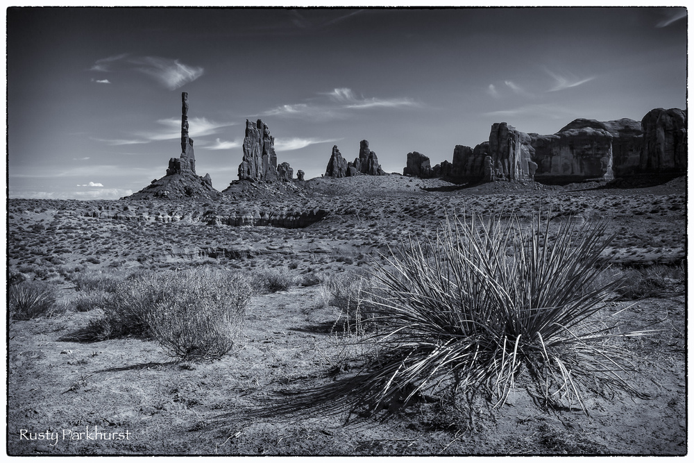 Totem Pole Landscape in Black & White