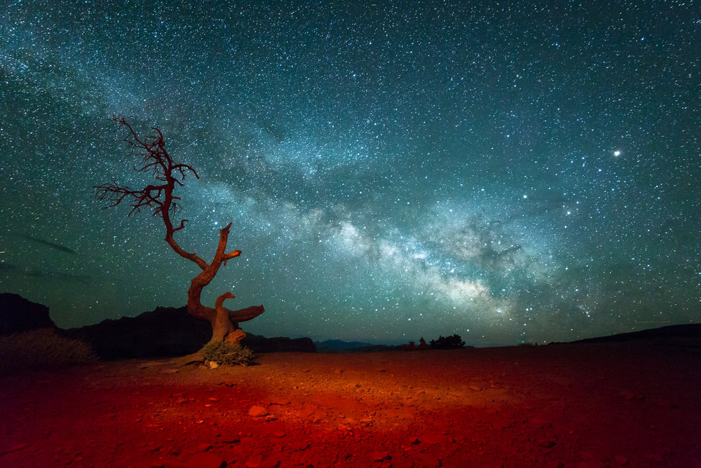 Capital Reef Milky Way