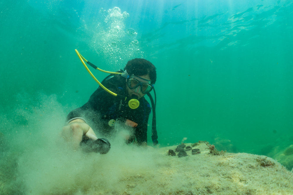Staff biologist Joey Mandara cleans a large boulder where he will cement fragments of coral.