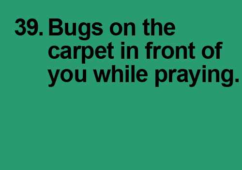 Noticing bugs on the carpet in front of you while praying and hearing sisters scream — so much for Khushoo!