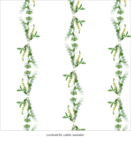 Herbarium_Spring_Loofestrife_print_design_by_Thomas_Voorn.jpg