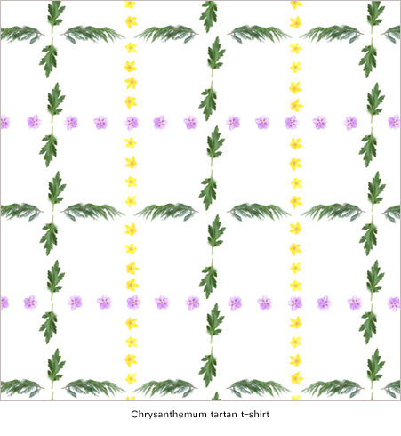 Herbarium_Spring_Chrysanthemum_print_design_by_Thomas_Voorn.jpg