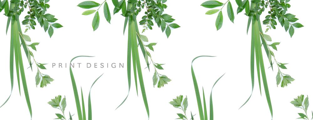 freelance_print_ontwerper_herbarium_by_Thomas_Voorn.jpg