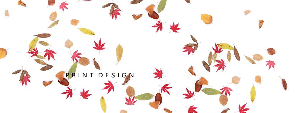 freelance_print_ontwerper_illustrator_Thomas_Voorn.jpg