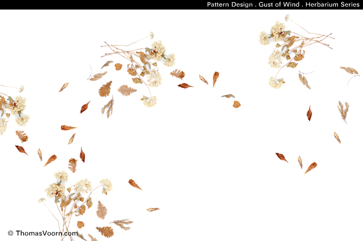 photographic_wallart_photowallpaper_autumn_floral_print_by_thomas_voorn.png