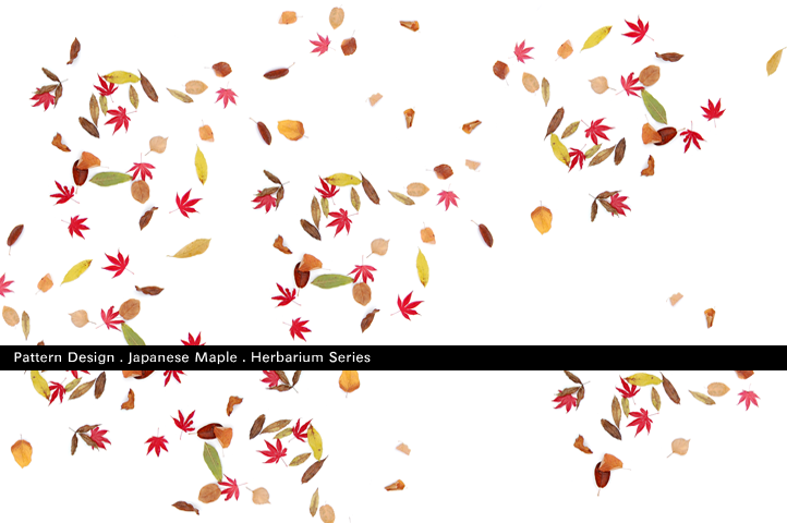 Pattern_surface_Prints_buy_for_sale_autumn_by_designer_Thomas_Voorn.png