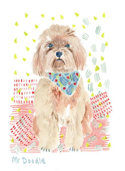Mr Doodle Dog.jpg