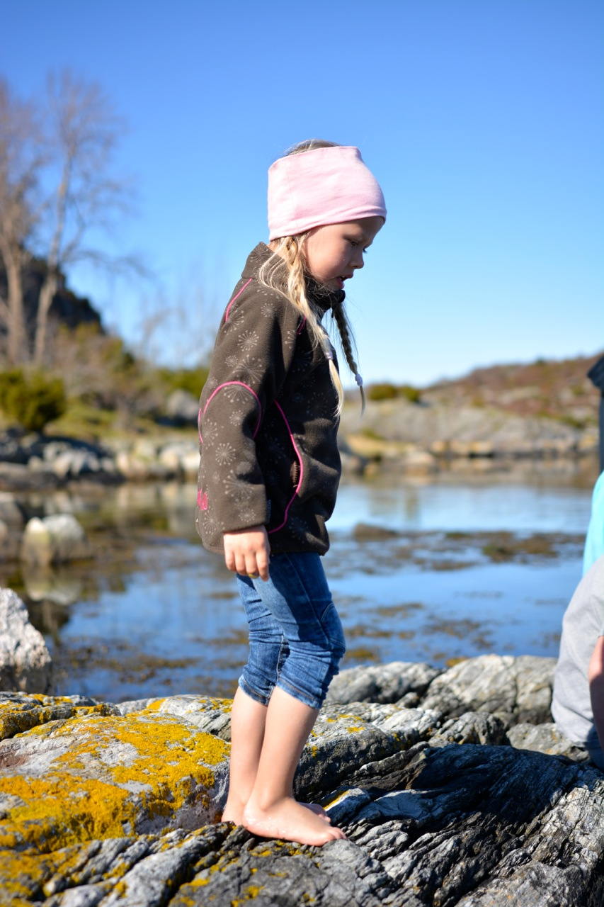 Sulsøy 2014 09.jpg