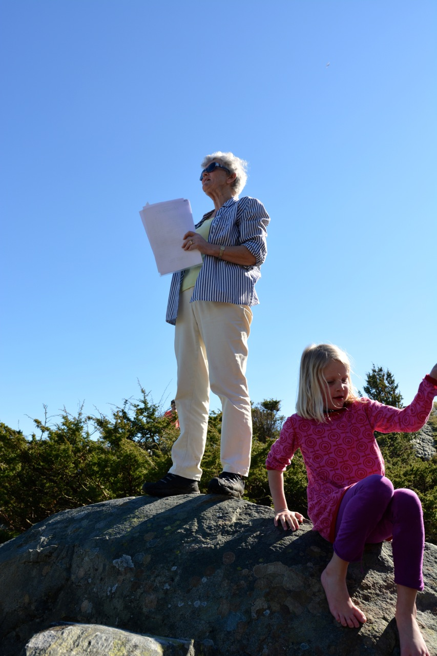 Sulsøy 2014 10.jpg