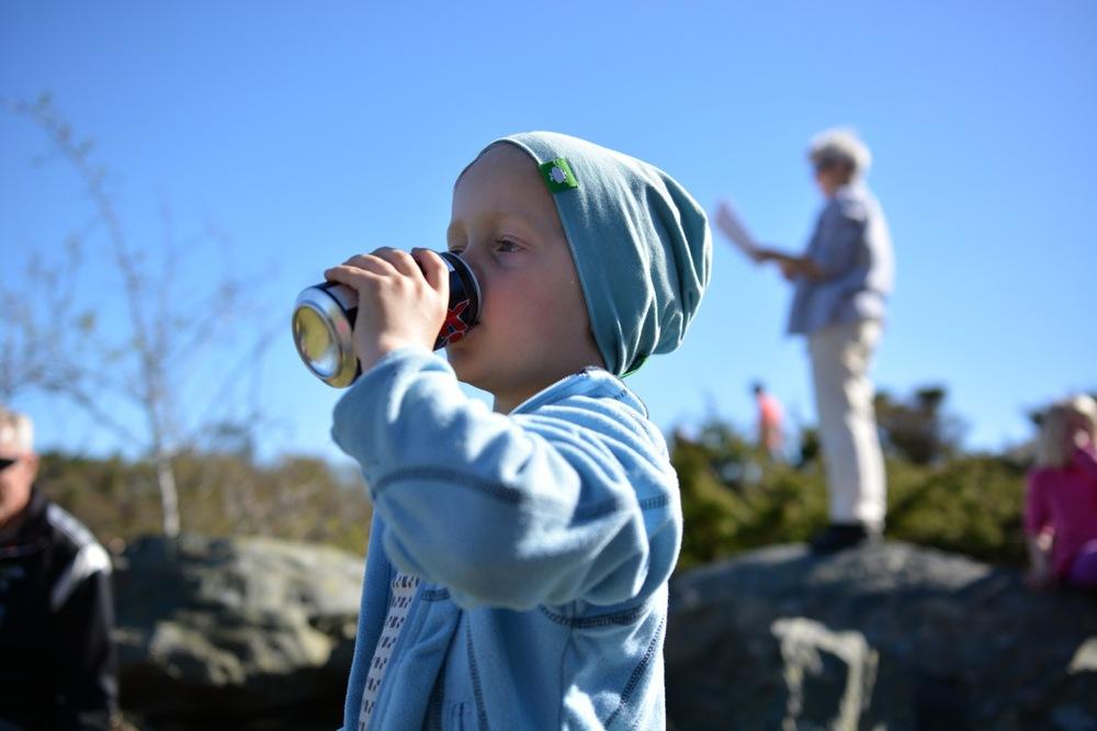 Sulsøy 2014 12.jpg