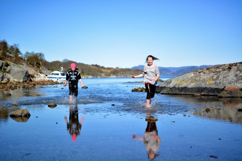 Sulsøy 2014 19.jpg