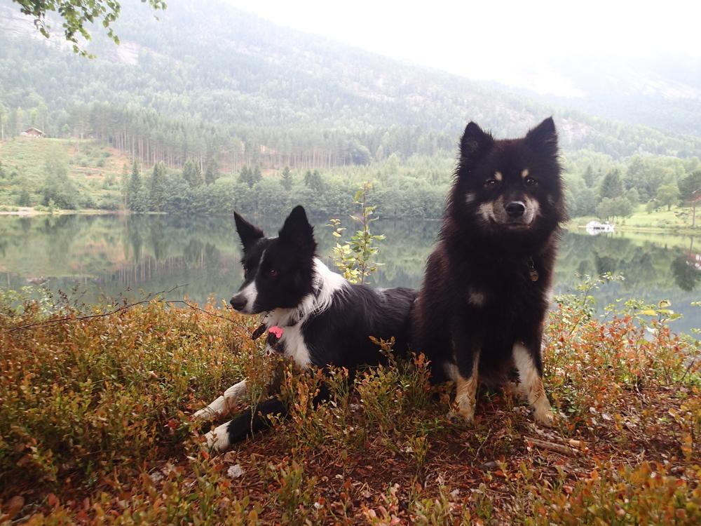 Telemarkskanalen (3) Zara og Emil.JPG