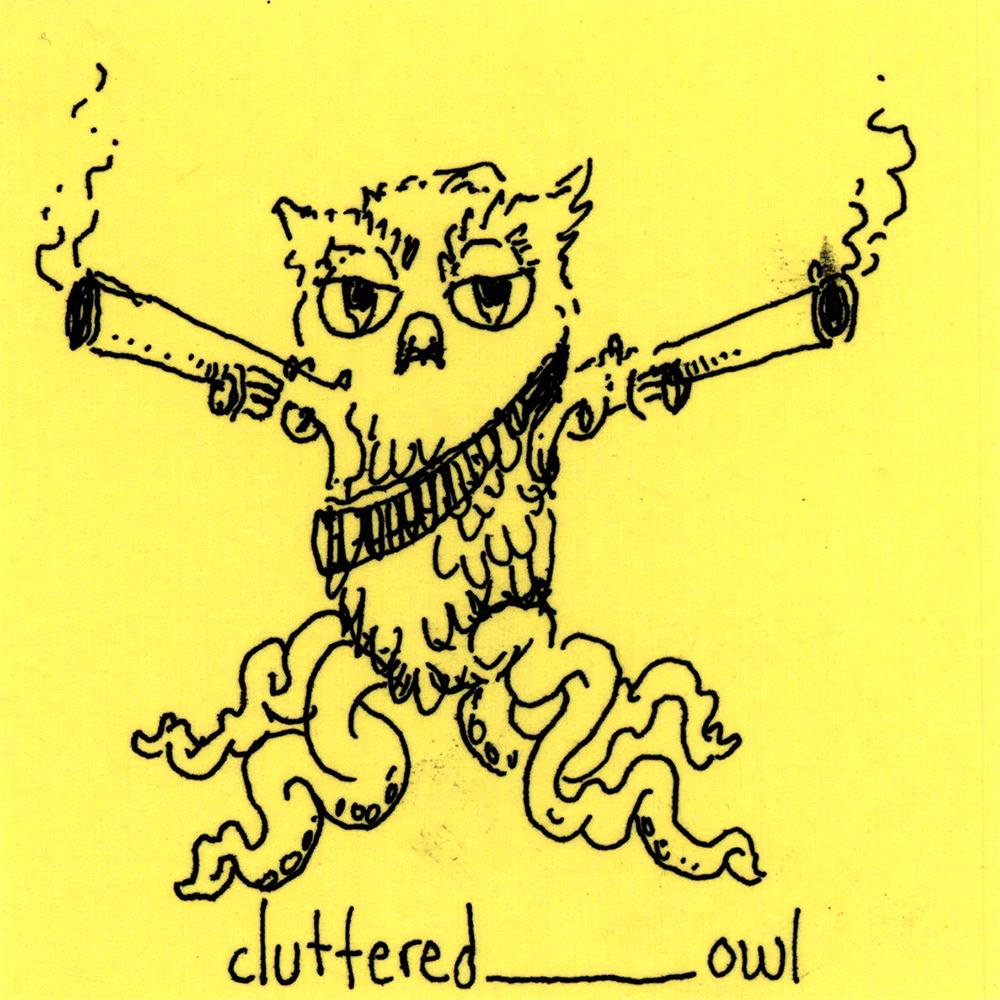 cluttered_owl.jpg