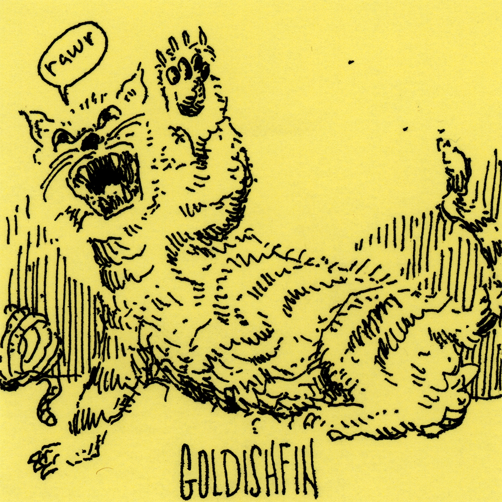 goldishfin.jpg