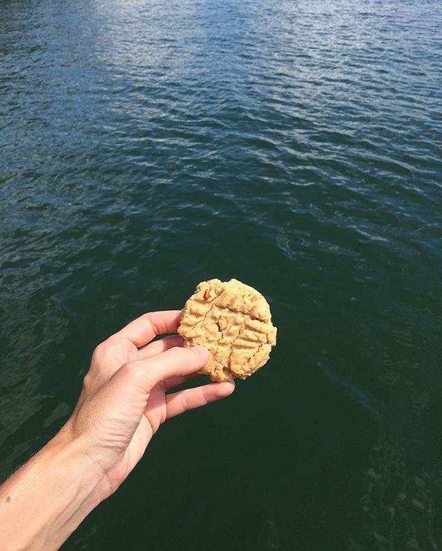 Happy Memorial Day! 🇺🇸 #thecookiecult