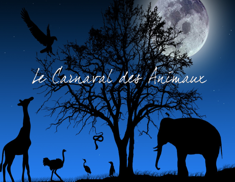 Le Carnaval des Animaux 1.png