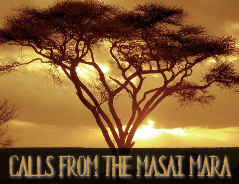 Calls from the Masai Mara 1.png