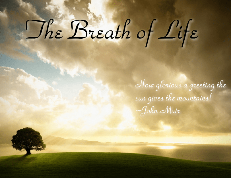 The+Breath+of+Life+1-min.png