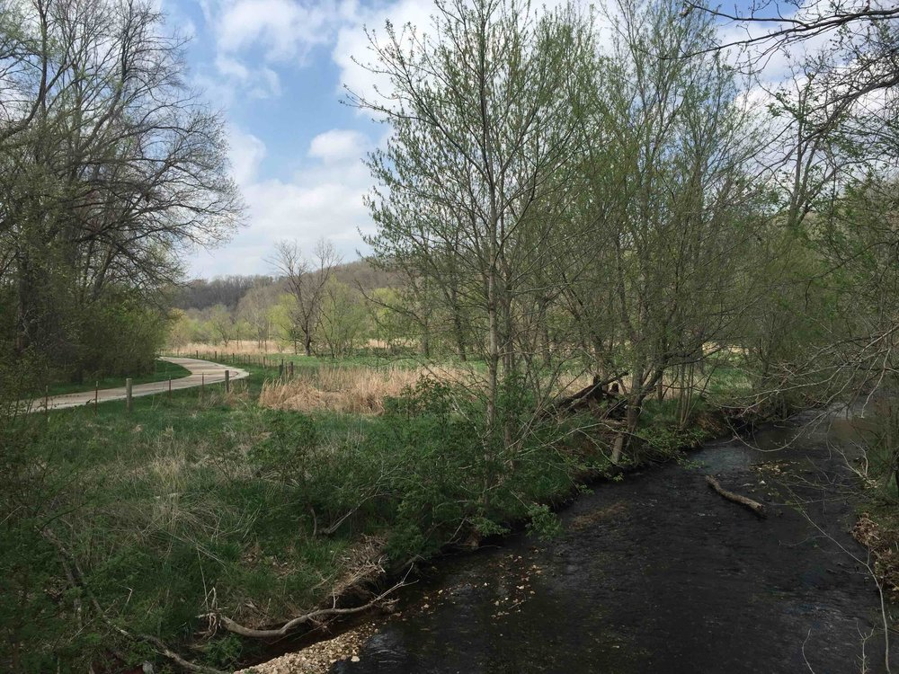 Preserved natural stream corridors perform a range of ecosystem services, and they usually offer great recreation opportunities. (North Bentonville Trail on McKisic Creek, Bentonville, AR | Photo: Mikel Wilkins