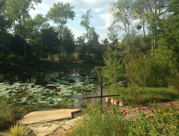 Heath Butterfly Sanctuary.jpg