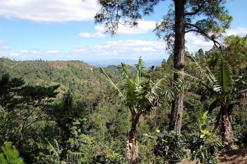 Las Brumas - Vista.jpg