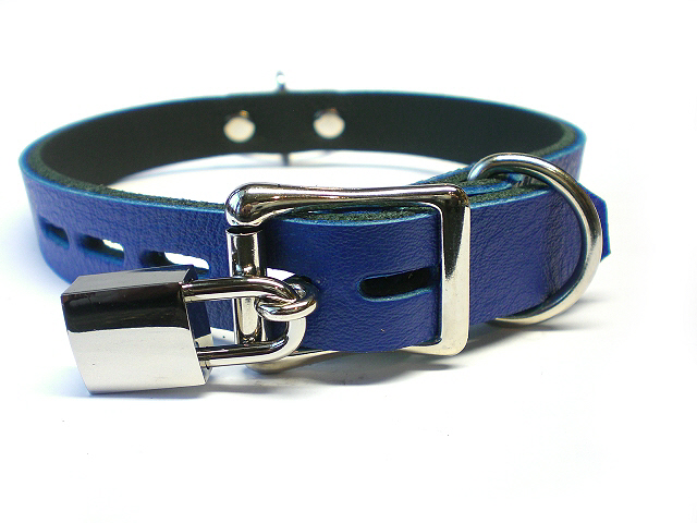 lockable buckle w/padlock - royal blue