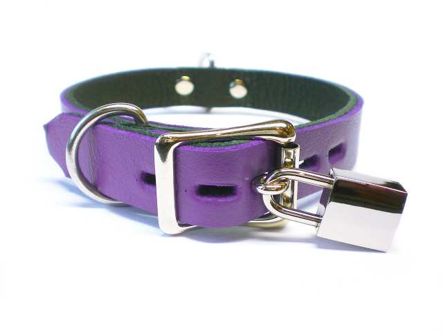 lockable buckle w/padlock - electric purple