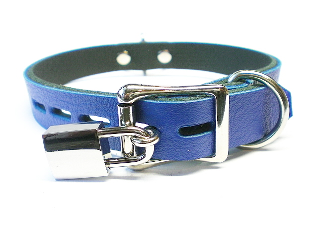 lockable w/padlock - royal blue