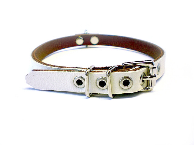 standard buckle - white w/brown inlay