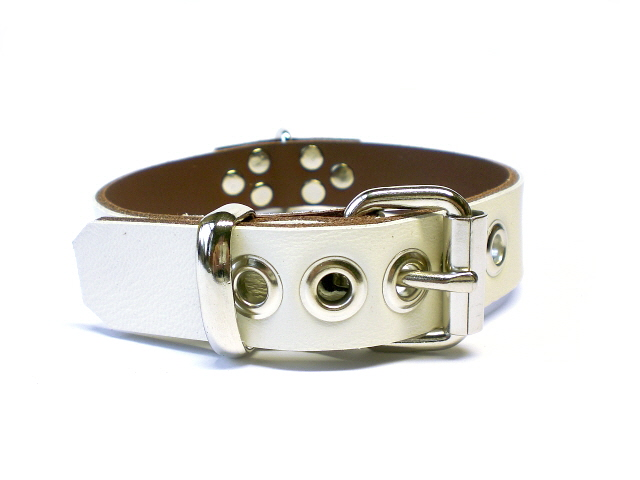 standard buckle - ivory white w/brown inlay