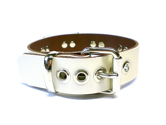 standard buckle in white