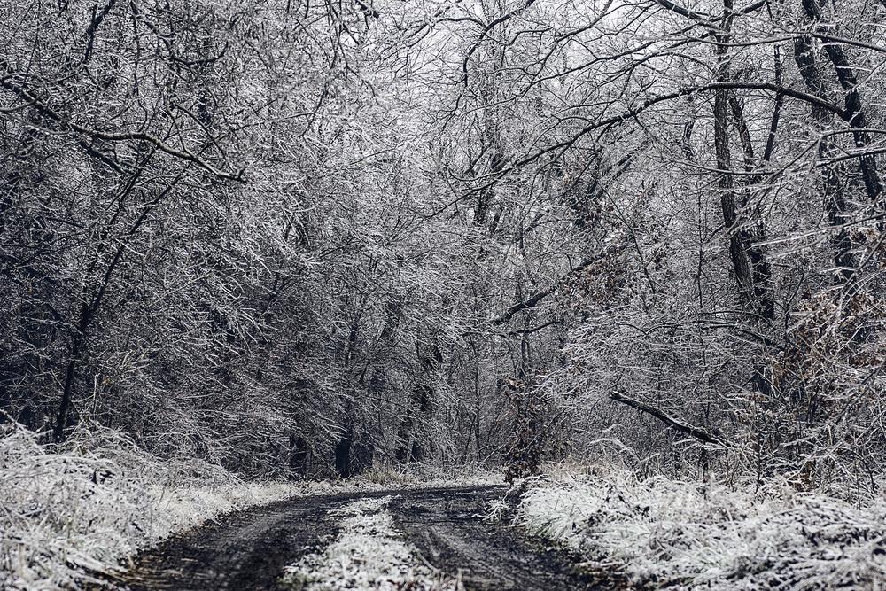 Pawhuska Winter | 2013
