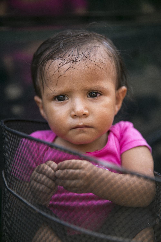 Basket Baby | 2014