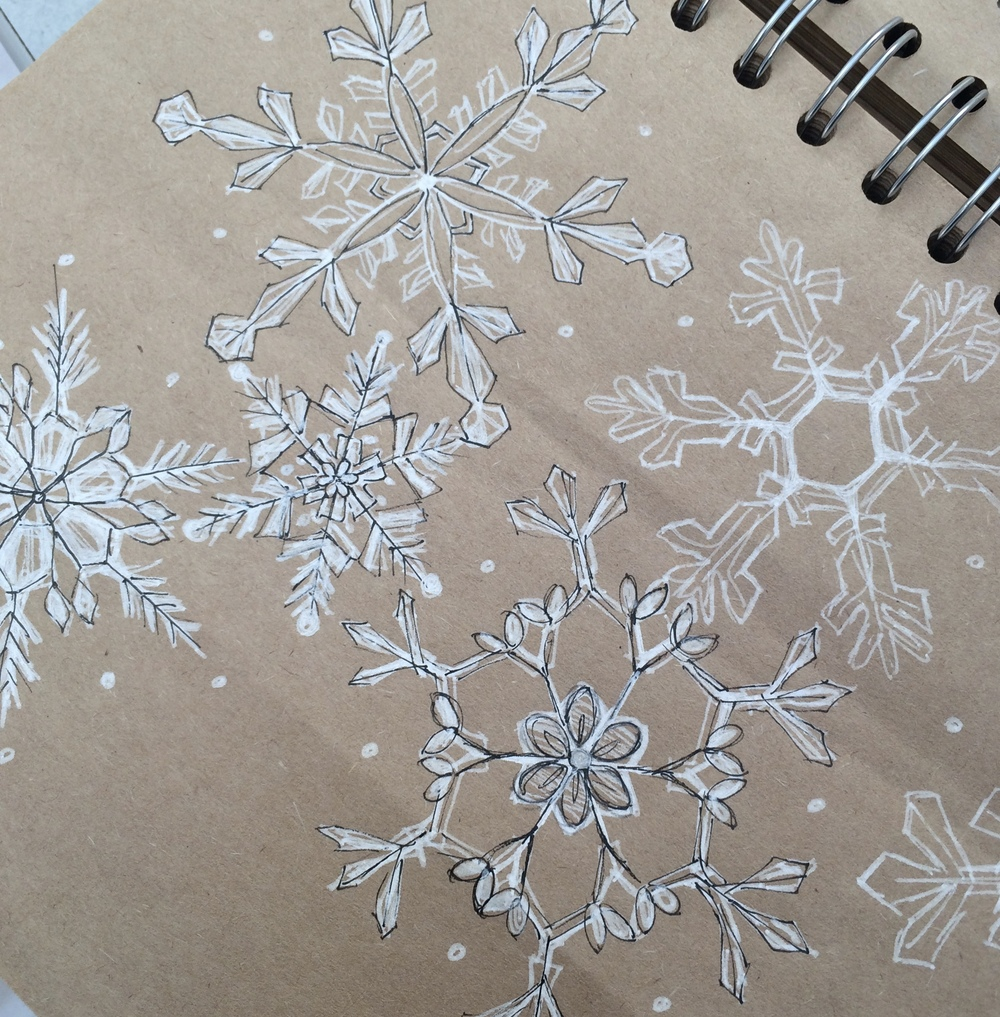 Rough sketches for the paper snowflakes, based on real snowflakes under the microscope.
