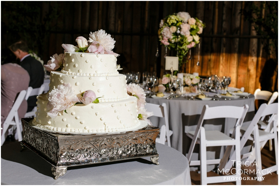 Seranak-Tanglewood-Wedding-Tricia-McCormack-Photography_0097.jpg
